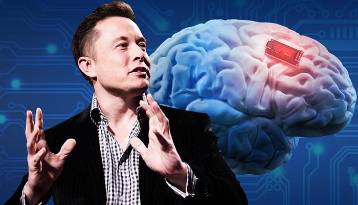 """""""อีลอน มัสก์"""" เปิดตัวเทคโนโลยี ฝังชิป AI ในสมองหมู"""